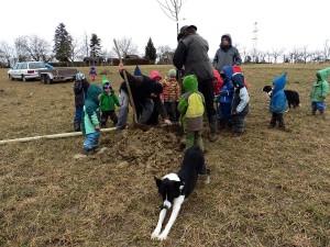 Baum-setzen-auf-der-Kinderbaumwiese